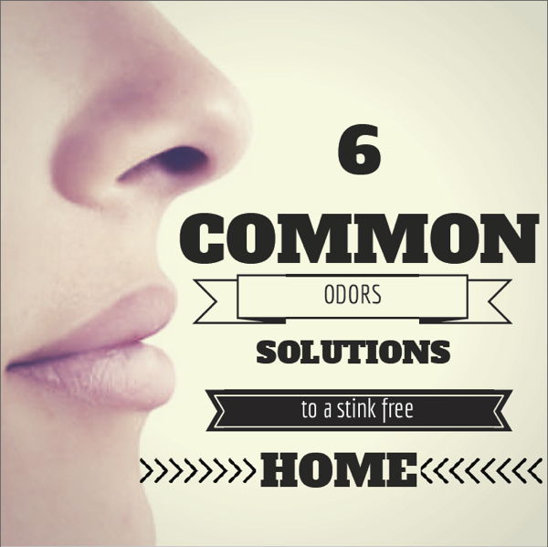 6 home odor solutions